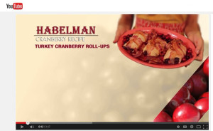 Turkey Cranberry Rollups